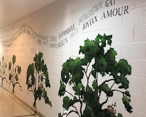 La murale réalisée par cinq jeunes contrevenants et leurs éducateurs du centre jeunesse Cité-des-Prairies est composée d'arbres qui représentent leur évolution.