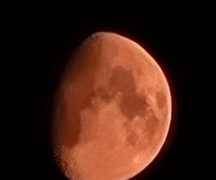 Image principale de l'article Une lune orange qui n'est pas une bonne nouvelle