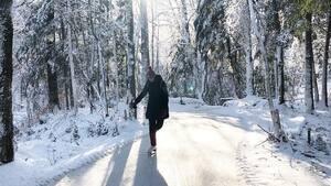 Image principale de l'article 8 sentiers glacés où patiner en forêt