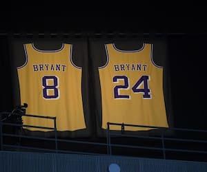 Le «8» et le «24» de Kobe Bryant dans les hauteurs du Staples Center.