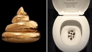 Des objets, comme ici des couches, et même des œuvres d'art sont exposés aux curieux.