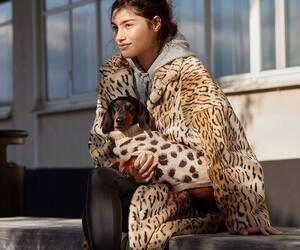 Image principale de l'article Vous pouvez «matcher» avec votre chien