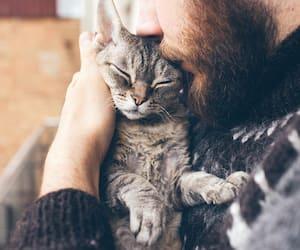 Image principale de l'article Preuves que votre animal est au coeur de votre vie