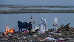 Image principale de l'article Un filet dans le Gange pour repêcher des morts