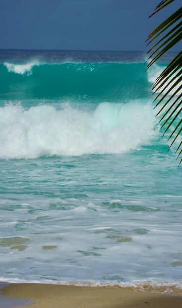 Image principale de l'article La Barbade vous invite à travailler à la plage