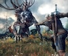 <i>The Witcher 3 : Wild Hunt</i>