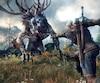 <i>The Witcher 3 : Wild Hunt</i>
