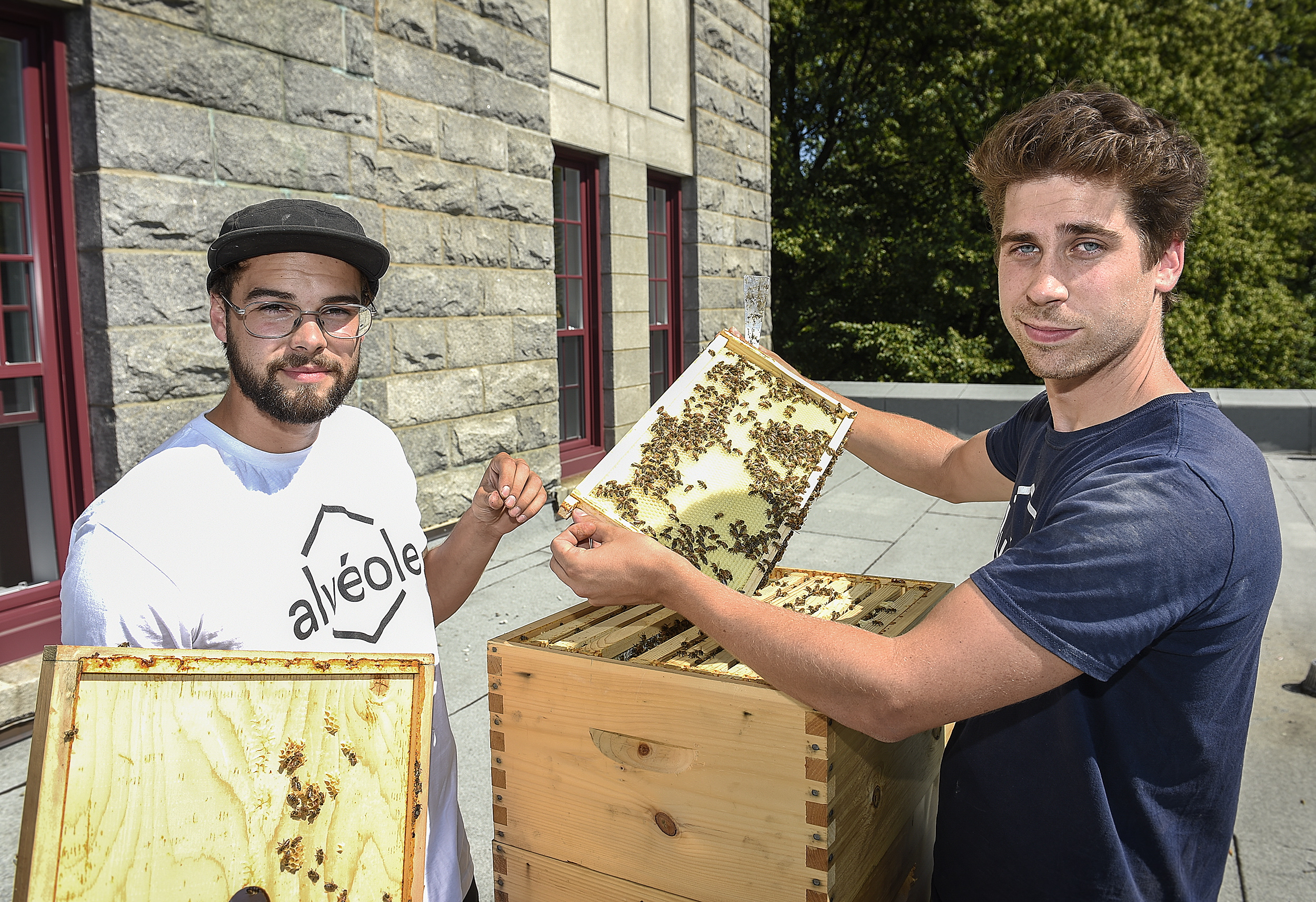 apiculteur a quebec