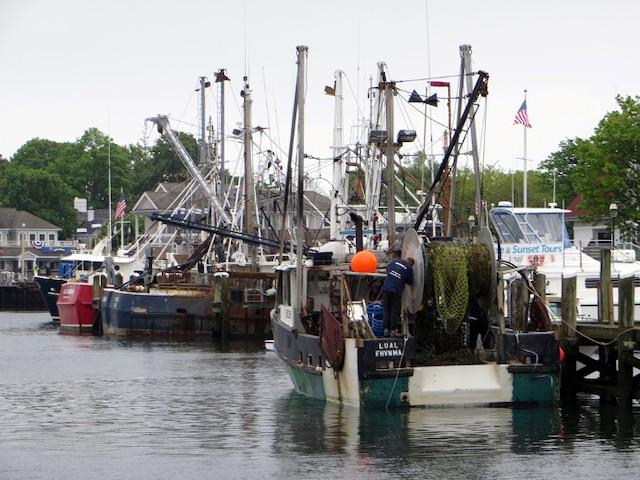 La marina Hyannis, à Cape Cod