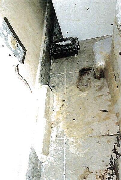 Crottes de souris sur le plancher parmi «de la saleté diverse».