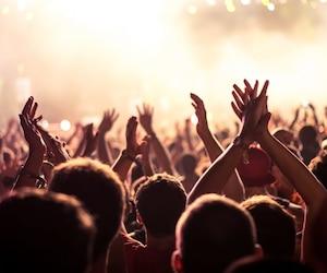 bloc festival musique music
