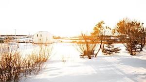 Image principale de l'article À voir: les Îles-de-la-Madeleine en plein hiver