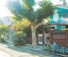 Les <i>casa particular</i> sont parfaites pour ceux qui veulent découvrir la vraie Havane