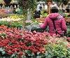 En raison du froid, moins de gens se rendent dans les centres de jardinage, comme c'est le cas à la Ferme Bédard & Blouin, dans l'arrondissement Beauport, à Québec.