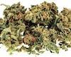 Bloc marijuana Cannabis