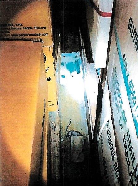 Une souris morte dans une trappe dans l'entrepôt