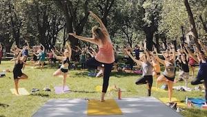 Des cours de yoga en plein air gratuits tout l'été