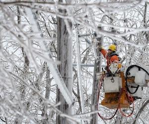 un employé d'Hydro-Québec se trouve en hauteur, dans la cour arrière d'un centre commercial du boulevard des Laurentides.