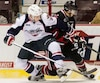 Niagara Ice Dogs V Windsor Spitfires