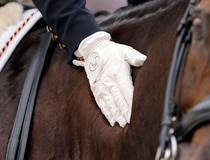 German rider Langehanenberg strokes her horse Damon Hill NRW after winning the silver medal in the Individual Competition Dressage during the World Equestrian Games, in Caen