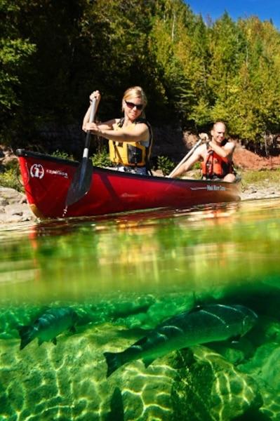 Cimes Aventure organise des excursions en canot sur la rivière Bonaventure, en Gaspésie.