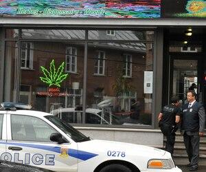 En août 2016, la boutique Weeds Québec a été perquisitionnée par le Service de police de la Ville de Québec.