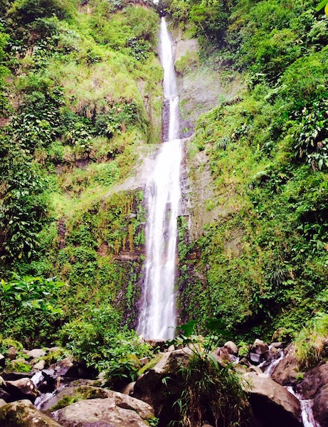 Chutes de la rivière Moreau, Goyave, à l'est de la Basse-Terre.