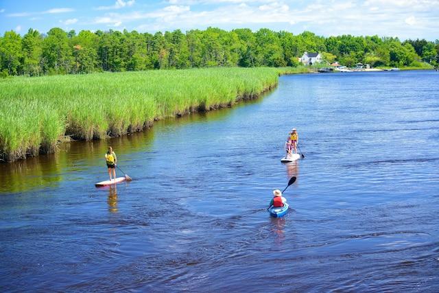 Le kayak et planche à pagaie sont pratiqués  dans d'immenses marais salés.