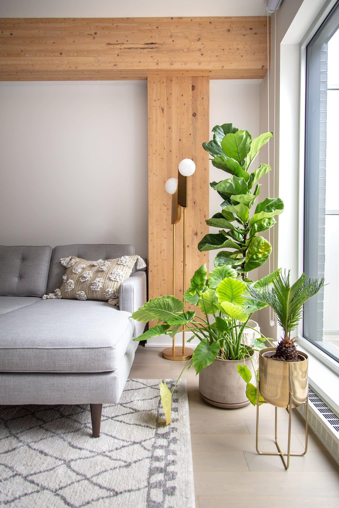 Condo: pour l'amour du vintage   My Home Decor en 2019
