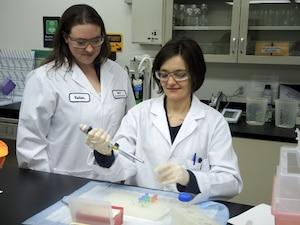 Lise-Anne Raukas et Josée Demers travaillent pour le seul laboratoire d'analyse d'ADN au Québec.