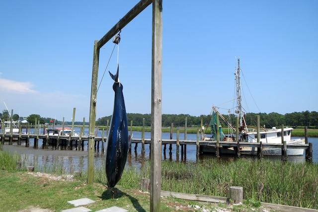 La pêche sportive est une activité importante sur la côte.