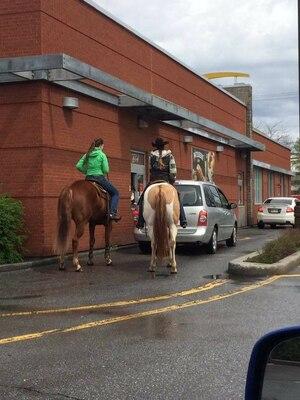 Deux chevaux à la commande à l'auto du McDo