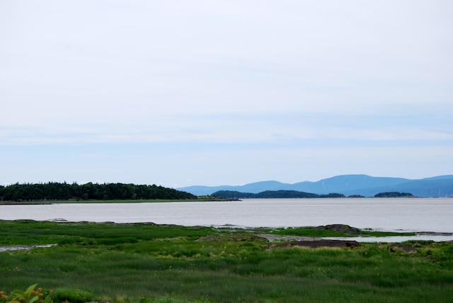 Une balade à pied ou à vélo permettra d'observer les splendeurs de L'Isle-aux-Grues, son majestueux fleuve et ses nombreux oiseaux.