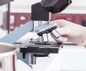 female student looking into the microscope