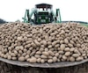 FILES-GERMANY-AGRICULTURE-POTATO-CARTEL