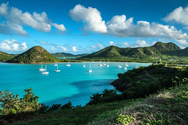 Une vue imprenable d'une des multiples baies d'Antigua.