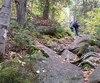 La forêt Ouareau, dans Lanaudière, attire de nombreux randonneurs. La MRC souhaite y autoriser des coupes forestières.