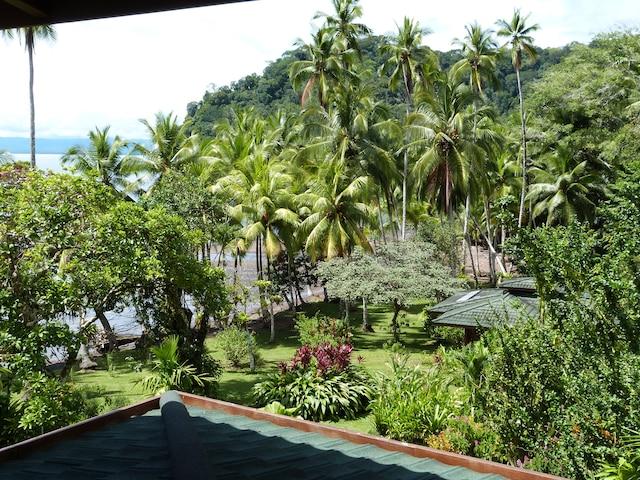 Le Lodge offre une vue imprenable sur le jardin tropical de Playa Cativo.