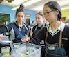 Kiara, Melina et Sheela-Sati, des élèves de l'école secondaire Leblanc, participent à lacoopérative La fourmi verte, qui comprend un café étudiant où les smoothies sont très populaires.