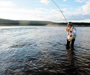 André Cyr, un ancien guide de pêche au saumon, peut dire adieu à cette activité dans le nord du Québec. On le voit ici pêcher à la mouche sèche sur la rivière aux Mélèzes, une des meilleures au monde.