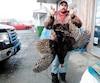 Le Beauceron Cédric Lamontagne est l'un des 2000 chasseurs québécois à avoir attrapé deux dindons sauvages ce printemps.