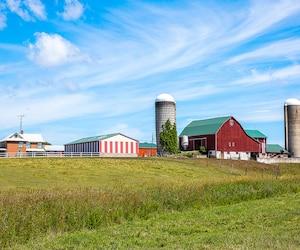 L'accès au financement pour la relève agricole est l'un des enjeux exprimés au cours des récentes consultations menées à travers le Québec par l'UPA.