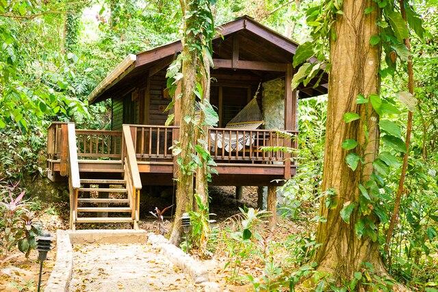 Les chalets du Lodge Pico Bonito sont tous campés au cœur d'une forêt luxuriante.