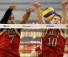 Crimson de Harvard, Rouge et Or, Volleyball