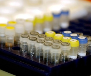 Bloc laboratoire santé éprouvettes éprouvette