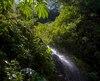 Bloc Amazonie forêt tropicale