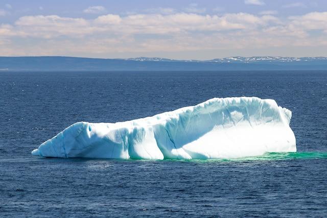 Les premiers icebergs  font leur apparition dans  le détroit de Belle Isle.  Ces sculptures de glace  façonnées par les  éléments de la nature  défilent en silence au  large de la côte.