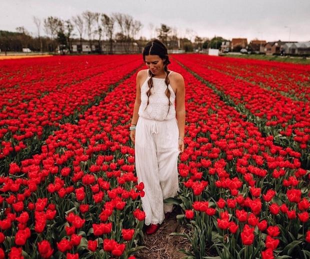 L'Immense Festival de Tulipes à 2 h 10 de Montréal