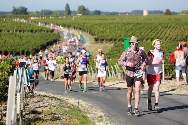 Des coureurs parcourent des vignobles lors du fameux marathon du Médoc.