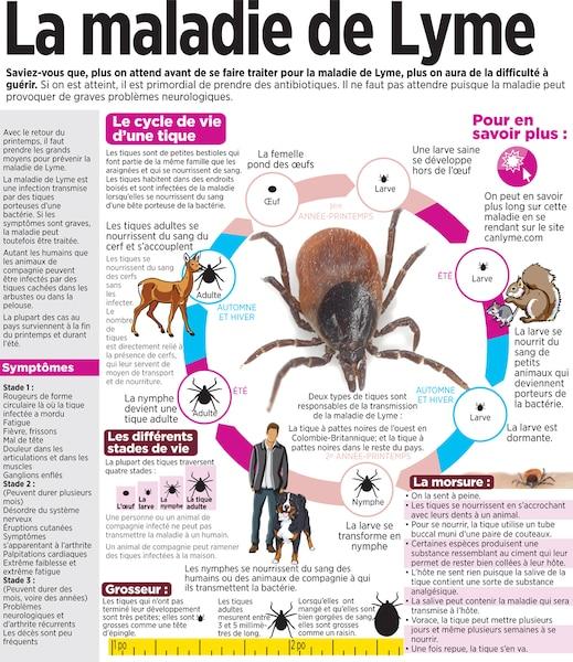 La maladie de Lyme | Le Journal de Montréal
